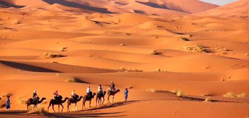 desert 03