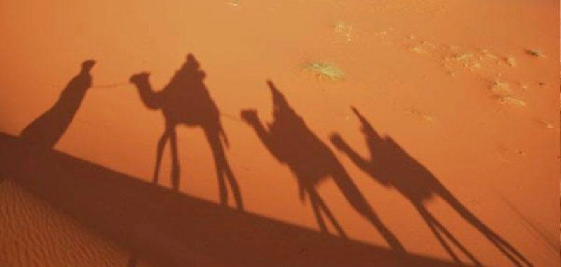 desert 06