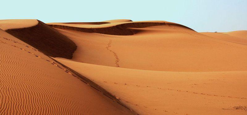 desert fez