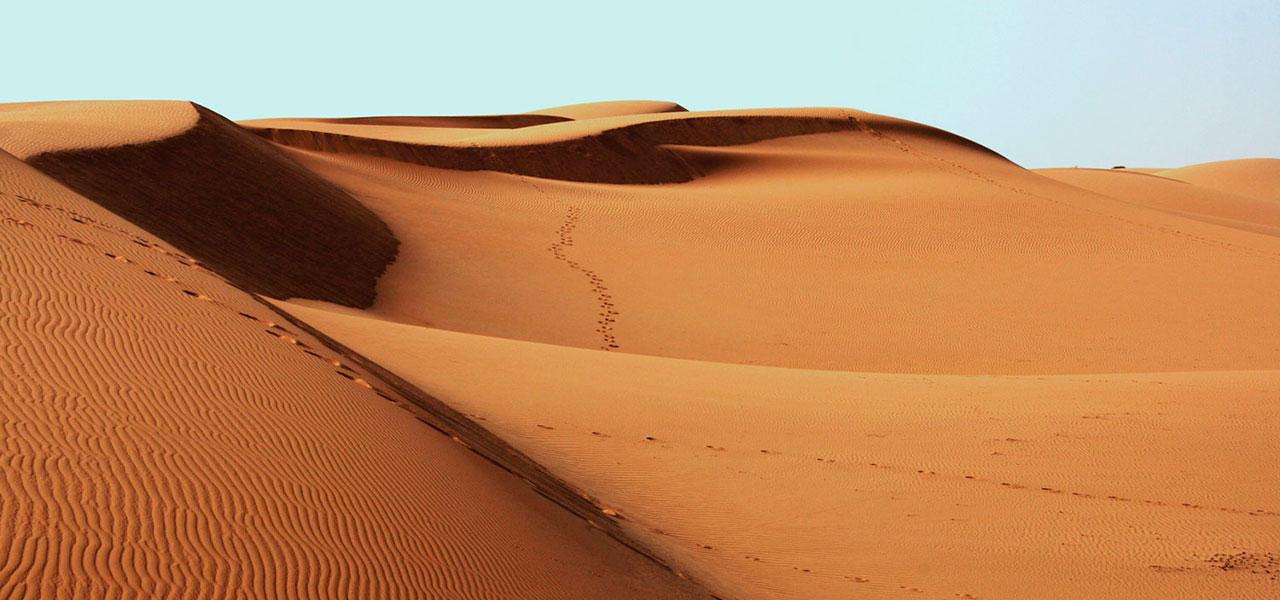 desierto fez