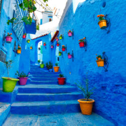 visit by the medina of chaouen